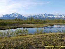 ALASKA HWY 1 #312 - © Cameron Bevers