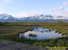 ALASKA HWY 1 #313 - © Cameron Bevers