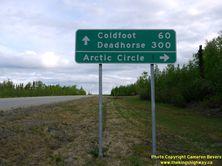 ALASKA HWY 11 #39 - © Cameron Bevers