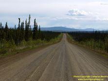 ALASKA HWY 11 #54 - © Cameron Bevers