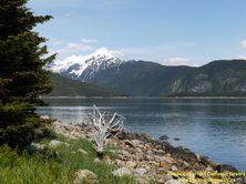 ALASKA HWY 7 #56 - © Cameron Bevers